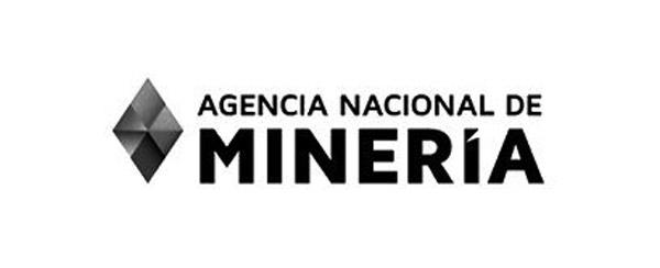 Agencia Nacional de Mineria